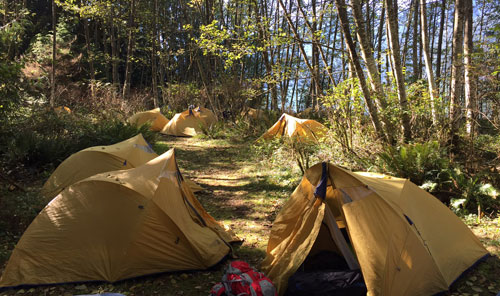Camps Expeditions Pitt Lake tents